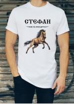 Мъжка тениска за Стефановден ID: 13