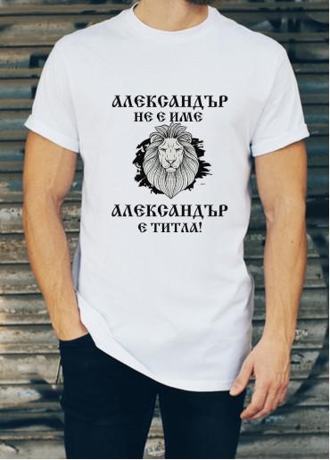 Мъжка тениска за Александровден ID: 6